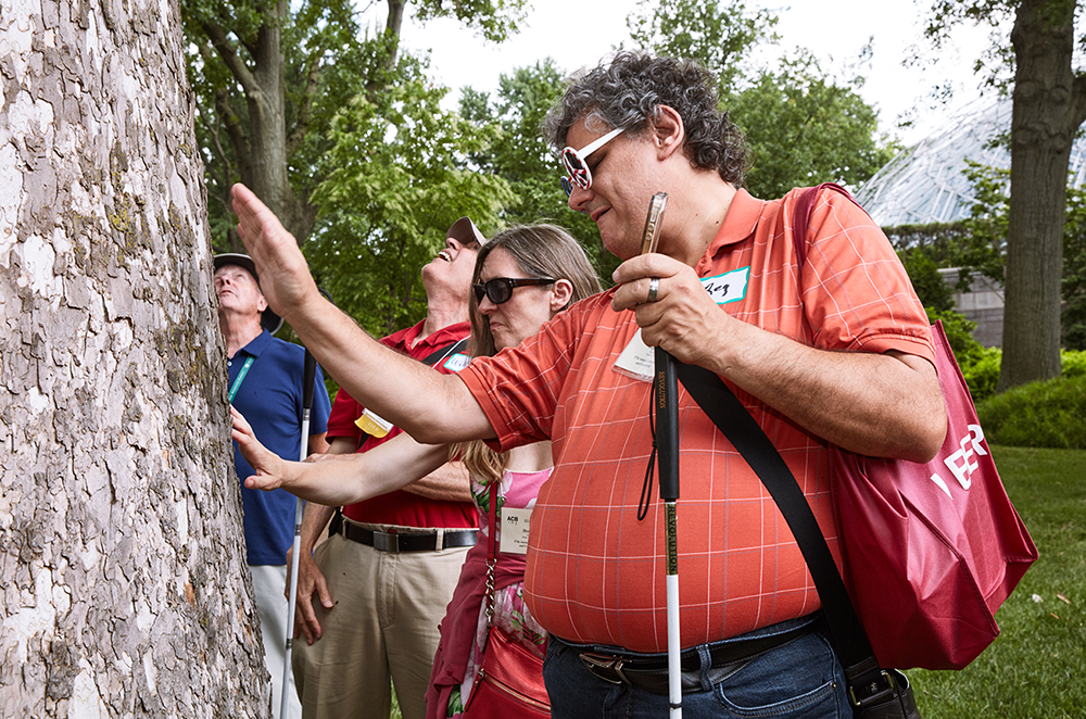 A group of ACB members touch tree bark during a botanical garden sensory tour