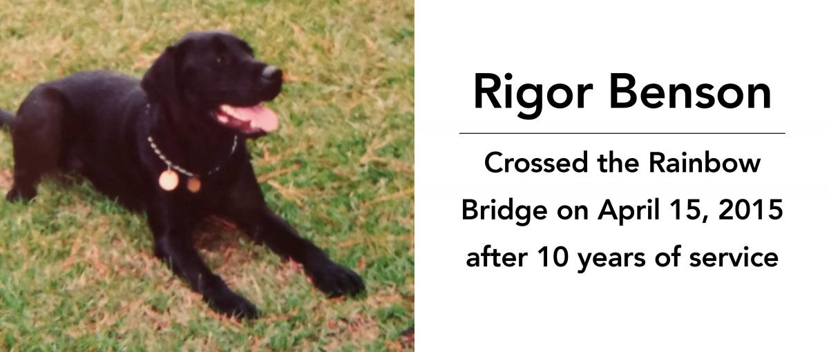 Rigor Benson crossed the rainbow bridge on April 15, 2015 after 10 years of service
